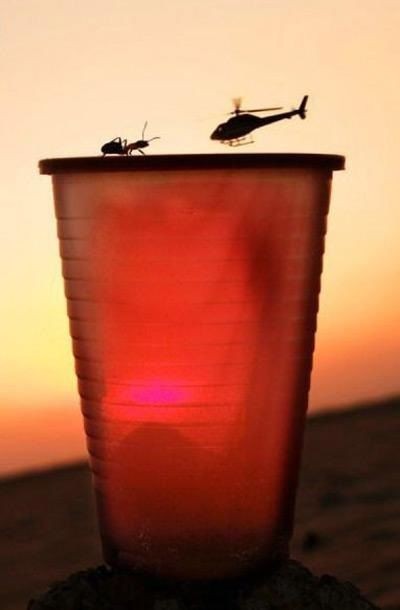 14-Bug-Cup-Helicopter