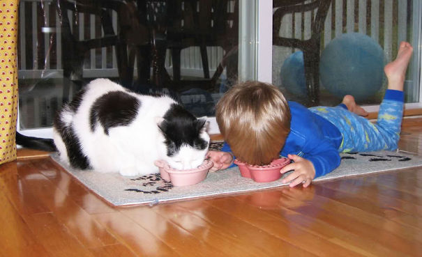 #10 Eating With The Cat